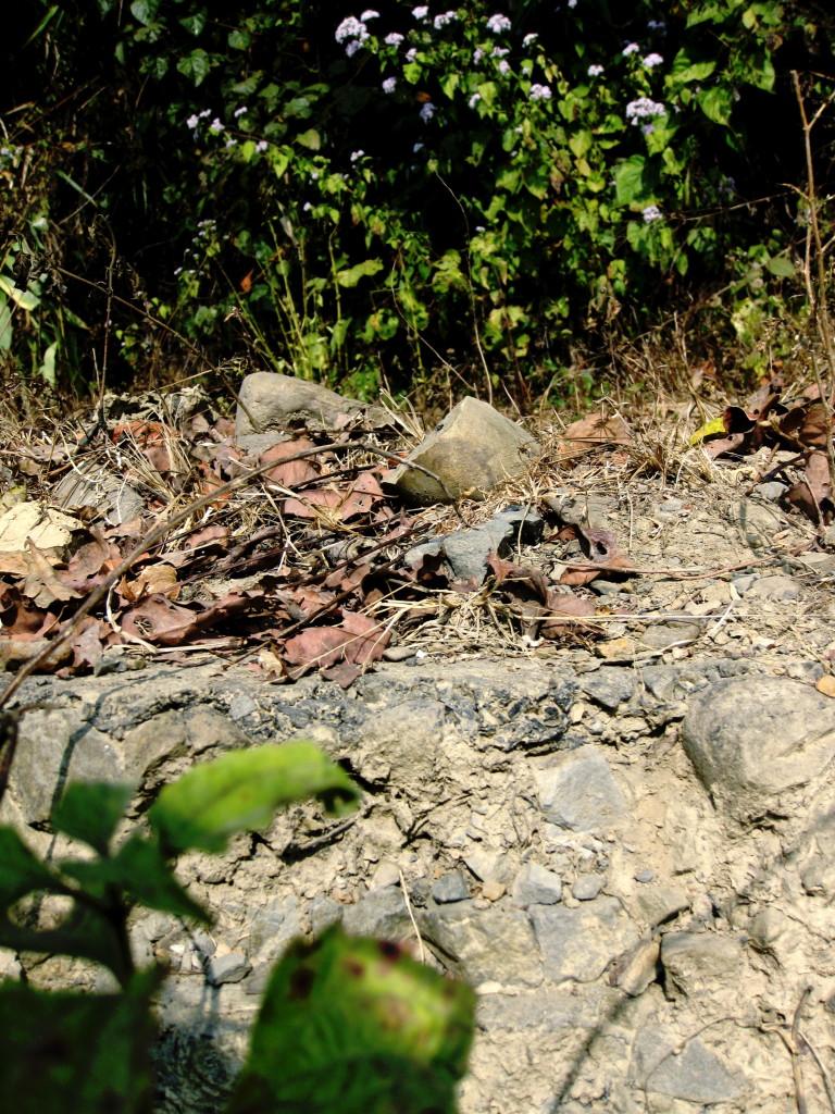 Cross section of old Stilwell Road - bitumen layer sprayed over chunks of granite